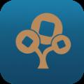 公司树app