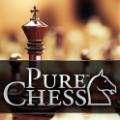 纯粹国际象棋破解版