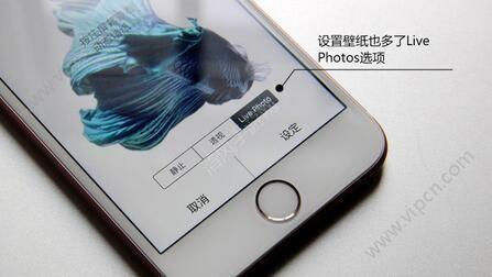 iPhone6s如何自制live photo动态锁屏图片? 自制live photo动态锁屏详解[多图]图片1