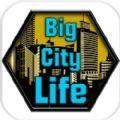 大城市生存游戏