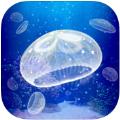 海蜇养成游戏IOS版