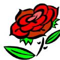 玫瑰庄园app