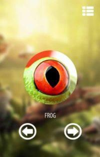 视觉动物模拟器游戏图3