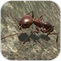 蚂蚁模拟安卓版