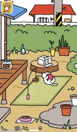 猫咪后院中文版图5