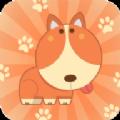 动物逃生救援宠物拼图安卓版