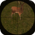 nice hunter游戏