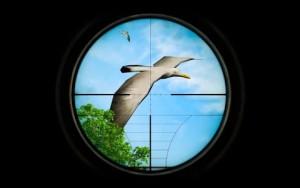 狩猎冲突大脚怪野生猎人游戏图3