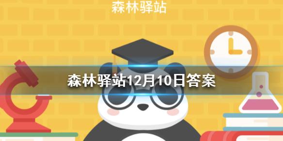 以下哪个季节是野生大熊猫的发情期?森林驿站12月10日答案最新[多图]