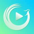 青鸾app