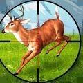 狙击普通的鹿游戏安卓版 v1.0