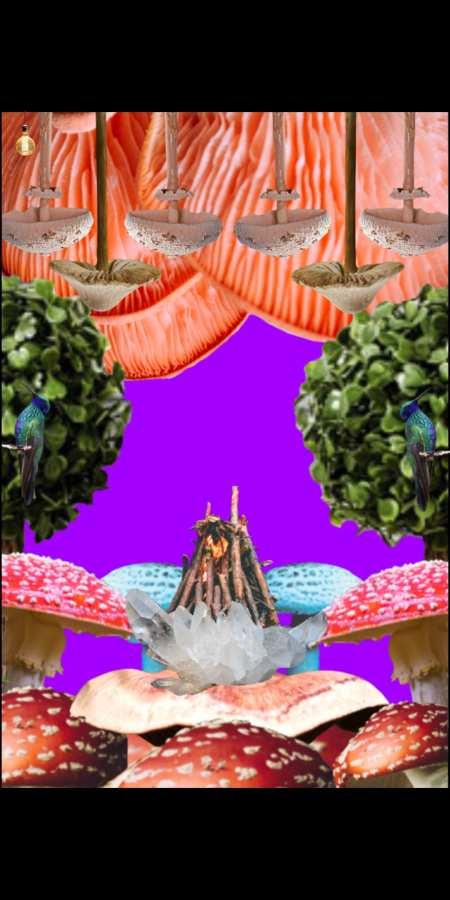 无梦房间游戏图片2